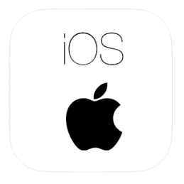 Software reset Apple iPad...