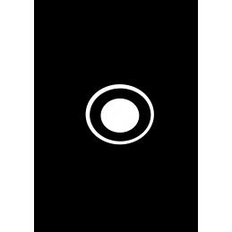 Vervangen camera iPad 5de gen